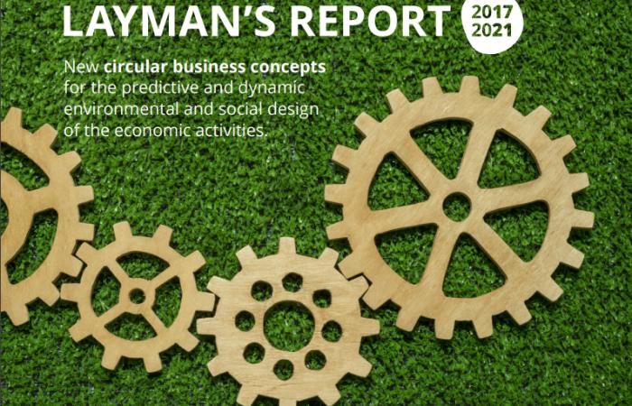 Layman's Report